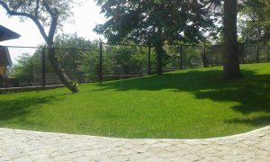 Озеленяване на двор, кв. Драгалевци [4]