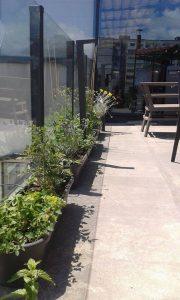 Озеленяване на тераса в офис сграда, гр. София [5]