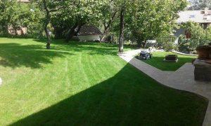 Озеленяване на двор, кв. Драгалевци [6]