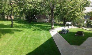 Озеленяване на двор, кв. Драгалевци [7]