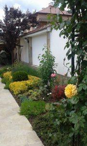 Озеленяване на двор, с. Доброславци [16]