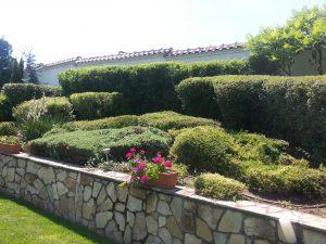Поддържане и озеленяване на двор Горна Баня [2]