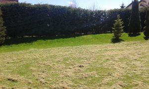 Поддържане и озеленяване на двор Горна Баня [19]