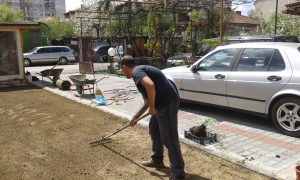 Озеленяване на двор, кв. Модерно предградие [13]