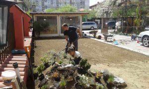 Озеленяване на двор, кв. Модерно предградие [14]