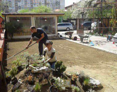 Озеленяване на двор, кв. Модерно предградие [6]