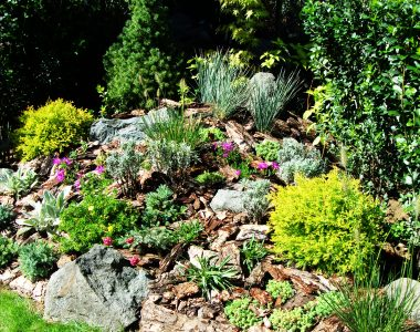 Озеленяване и поливна система – кв. Бояна [3]
