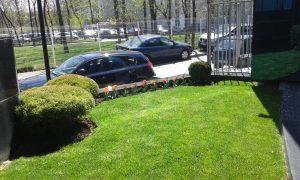 Озеленяване на зелени площи пред офис сграда [4]