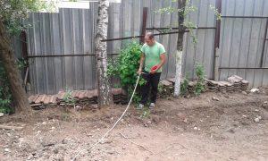 Озеленяване на двор, кв. Драгалевци [10]