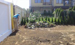 Озеленяване на двор, кв. Кръстова вада [2]
