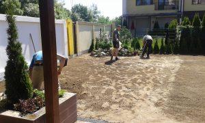 Озеленяване на двор, кв. Кръстова вада [5]
