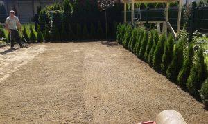 Озеленяване на двор, кв. Кръстова вада [6]