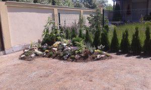 Озеленяване на двор, кв. Кръстова вада [8]