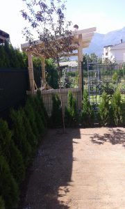 Озеленяване на двор, кв. Кръстова вада [28]