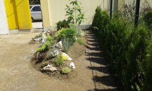 Озеленяване на двор, кв. Кръстова вада [10]