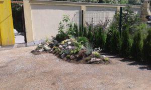 Озеленяване на двор, кв. Кръстова вада [11]