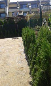 Озеленяване на двор, кв. Кръстова вада [30]