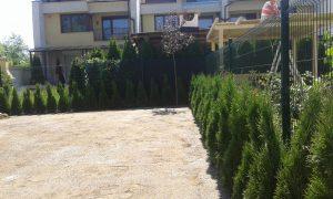 Озеленяване на двор, кв. Кръстова вада [12]