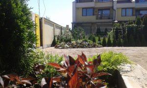 Озеленяване на двор, кв. Кръстова вада [14]