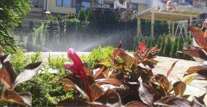 Озеленяване на двор, кв. Кръстова вада [16]