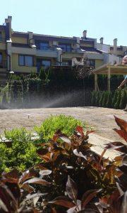 Озеленяване на двор, кв. Кръстова вада [31]