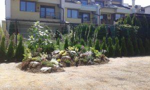 Озеленяване на двор, кв. Кръстова вада [19]