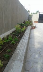 Озеленяване на двор, кв. Левски [9]