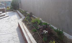 Озеленяване на двор, кв. Левски [1]