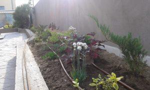 Озеленяване на двор, кв. Левски [2]