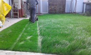 Озеленяване на двор, кв. Левски [6]