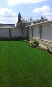 Озеленяване на двор, с. Доброславци [22]