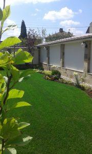 озеленяване на двора у дома