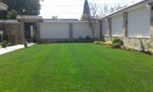 Озеленяване на двор, с. Доброславци [10]