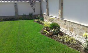 Озеленяване на двор, с. Доброславци [11]