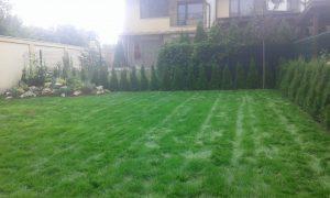 Озеленяване на двор, кв. Кръстова вада [24]