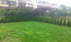 Озеленяване на двор, кв. Кръстова вада [26]