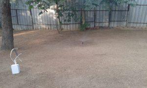 Озеленяване на двор, кв. Драгалевци [23]