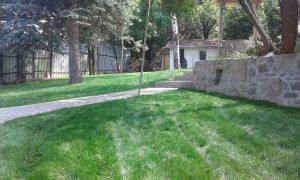 Озеленяване на двор, кв. Драгалевци [26]