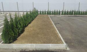 Озеленяване пред офис сграда Sun Systems [2]