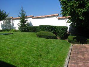 Поддържане и озеленяване на двор Горна Баня [5]