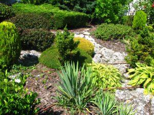 Поддържане и озеленяване на двор Горна Баня [9]