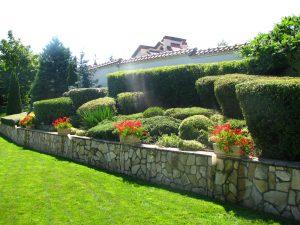 Поддържане и озеленяване на двор Горна Баня [10]