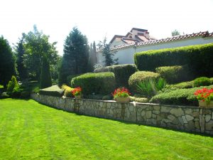 Поддържане и озеленяване на двор Горна Баня [11]