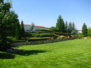 Поддържане и озеленяване на двор Горна Баня [15]