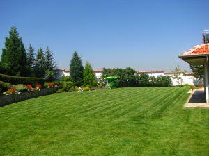 засяване на тревна смеска