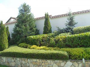 Поддържане и озеленяване на двор Горна Баня [17]