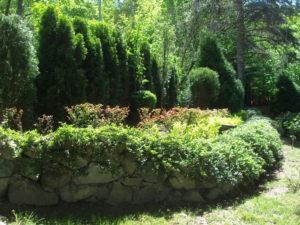 Поддръжка и озеленяване на двор, кв. Симеоново [1]