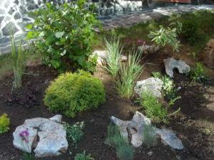 Поддръжка и озеленяване на двор, кв. Симеоново [9]