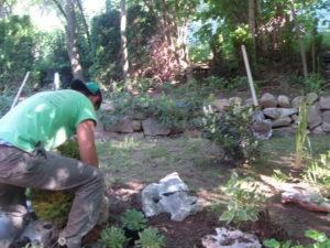 Поддръжка и озеленяване на двор, кв. Симеоново [7]