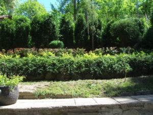 Поддръжка и озеленяване на двор, кв. Симеоново [4]
